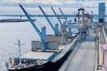 «НІКА-ТЕРА» в січні перевалила майже 460 тис. тонн зернових і олійних