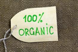 В Україні впровадять власну систему сертифікації органічного виробництва