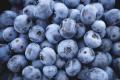 Надвисокі ціни на деякі ягоди дозволяють заробляти навіть неефективним виробникам, – експерт