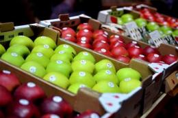 В ЄС підрахували врожай яблук і озвучили перспективи цін