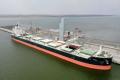 «НІКА-ТЕРА» перевалила 2 мільйони тонн вантажів з початку року