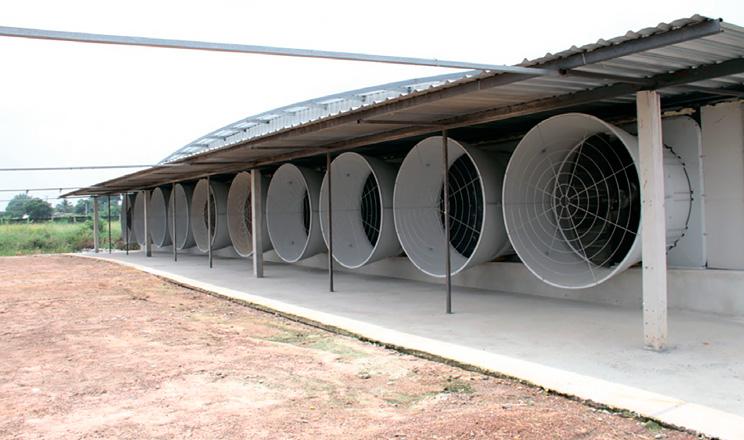 Стінові вентилятори нового покоління