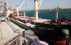 Термінал «Рисойл» за тиждень перевантажив понад 100 тисяч тонн зерна