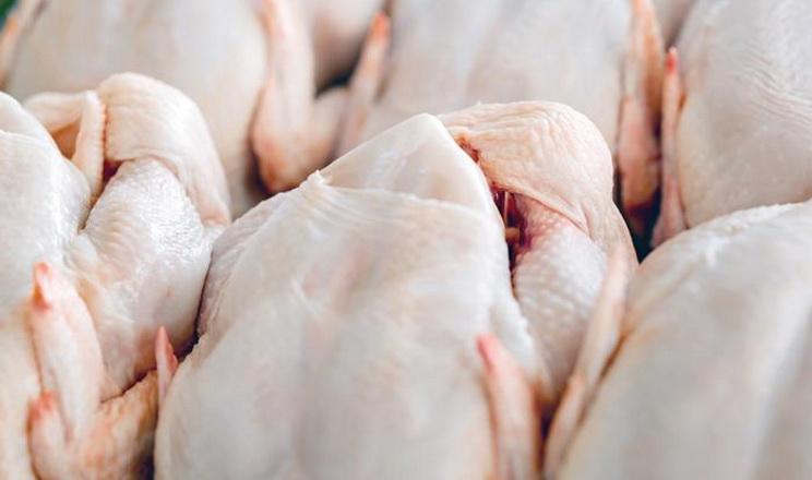 Цього року прибутковість виробництва м'яса птиці значно знизиться