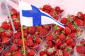 У Фінляндії заборонили в'їзд збирачам ягід з України
