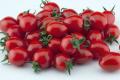 Нові томати чері мають довший термін зберігання