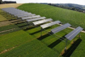 Під сонячними панелями виросло на 40% овочів