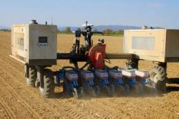 Робот засіяв кукурудзою 20 га