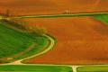 Найбільших втрат врожаю аграрії зазнають через недотримання науково обґрунтованих сівозмін, - науковці