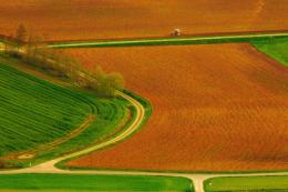 ООН має намір відновити близько 1 млрд невикористовуваних сільгоспземель