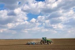 На Львівщині збільшилися посівні площі майже на 71 тис. га