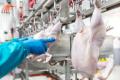 Цього року виробництво яловичини та курятини скоротиться, а свинини зросте, – USDA