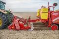 Європейський картоплярі з неохотою скоротять виробничі площі
