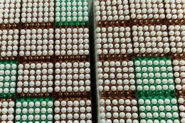 Виробництво яєць у І кварталі скоротилося на 13,7%