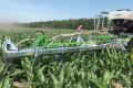 Greenseeder підсіватиме траву у кукурудзу