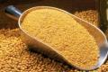 «Юхимівське» запустить лінію з виготовлення соєвого шроту