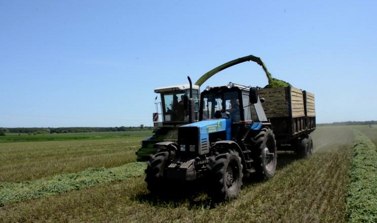 На полях Баришівської зернової компанії завершили сінажування люцерни