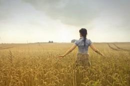 В Україні зростає кількість зайнятих у сільському господарстві осіб