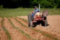 Засвоєння елеменів органічних добрив залежить від способу обробітку ґрунту