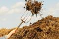 Способи скорочення викидів газоподібних речовин при збереженні гною