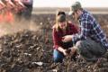 На Полтавщині під органічним виробництвом – 2% орних земель