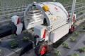 Роботи борються з грибними хворобами винограду та полуниці ультрафіолетом