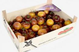 На французькому ринку томатів триває цінова війна