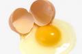 Які чинники впливають на якість білка яєць