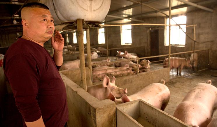 У Китаї звертають увагу на ймовірний дефіцит продовольства через демографічні зрушення