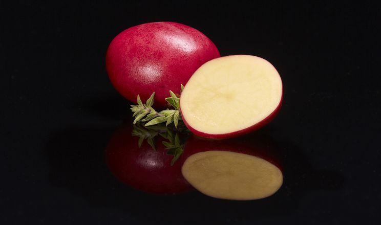 В Америці представили преміальний сорт картоплі