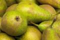 У ЕС очікують середній за три роки врожай груш
