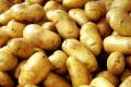 Французьких картоплярів орієнтують на якість продукції