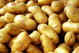 Українці стали споживати менше картоплі