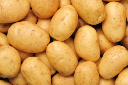 На ринках вже з'явилася імпортна картопля
