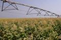 Уряд посилюватиме розвиток зрошення на півдні України