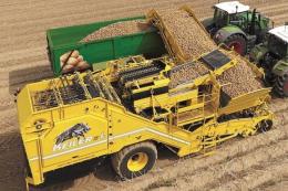 Ropa суттєво наростила виробництво картоплезбиральних комбайнів