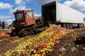Росія посилить боротьбу з контрабандою продуктів