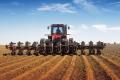 Ранні ярі зернові та зернобобові вже посіяли на 20% прогнозованих площ