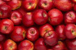 Prognosfruit 2020: В Україні вродить на 6% більше яблук