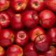 Росія подумає про ліміти імпорту яблук та слив