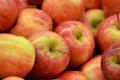 Яблук середньої та низької якості більшає