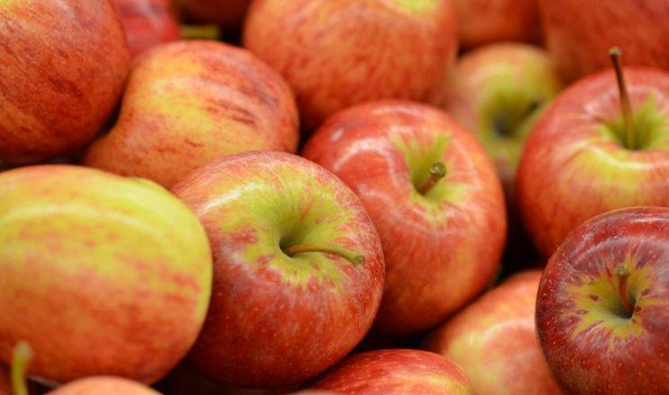 Названі найпопулярніші сорти яблук