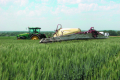 В Україні при азотному підживленні отримують втричі меншу прибавку врожаю, ніж у Франції