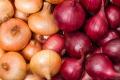 У першому кварталі зріс експорт цибулі, огірків, томатів і капусти