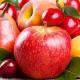 В Україні планують розвивати ринок зберігання і глибокої переробки плодово-ягідної продукції з інноваційним обладнанням