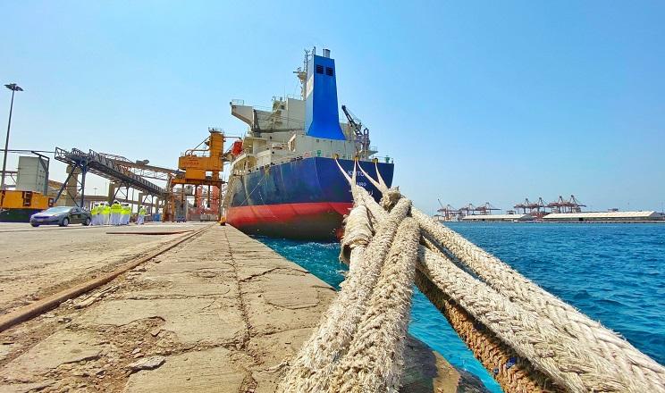 Першу за 12 років експортну партію української пшениці доправили в Саудівську Аравію