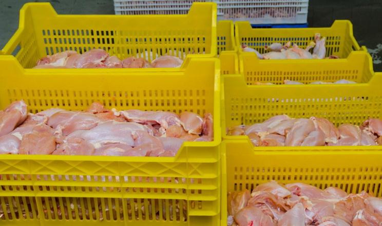 Експорт м'яса птиці за 11 місяців зріс на 6%