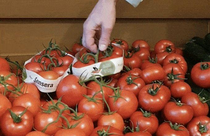 Кистьові томати мінімізують упаковку