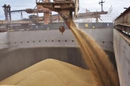 Україна експортувала більше 12 млн тонн зерна