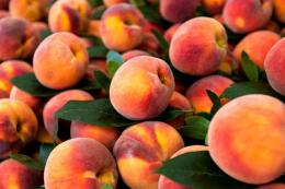 Світовий урожай персиків і нектаринів зменшився